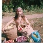 2001 – сбор урожая